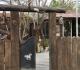 חדרים לפי שעה בקריית ביאליק | חדרים בחיפה והסביבה